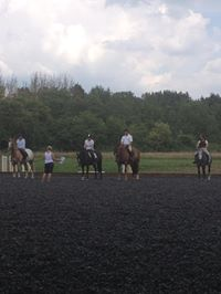 HVRC Event - How to Show - Working Hunter with Alison Morton