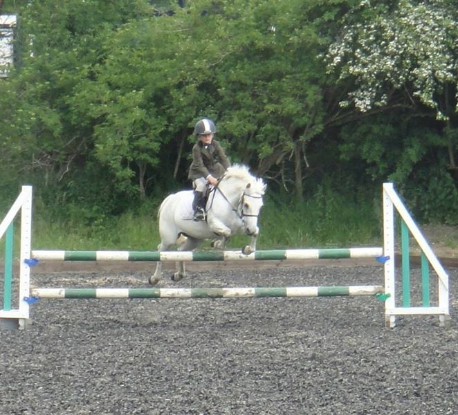 Showjumping Show - Finn Healy flying on the HVRC arena