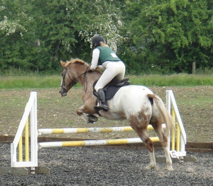 Elaine Pott and Woody showing us how it's done at HVRC Jumping
